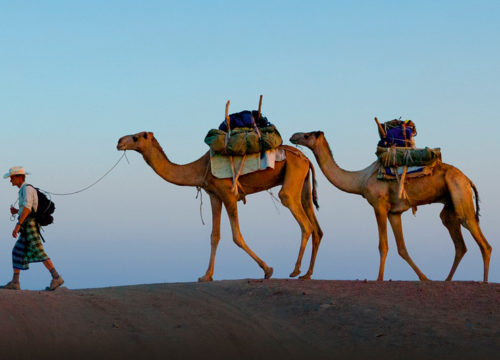 Danakil Safari Tours